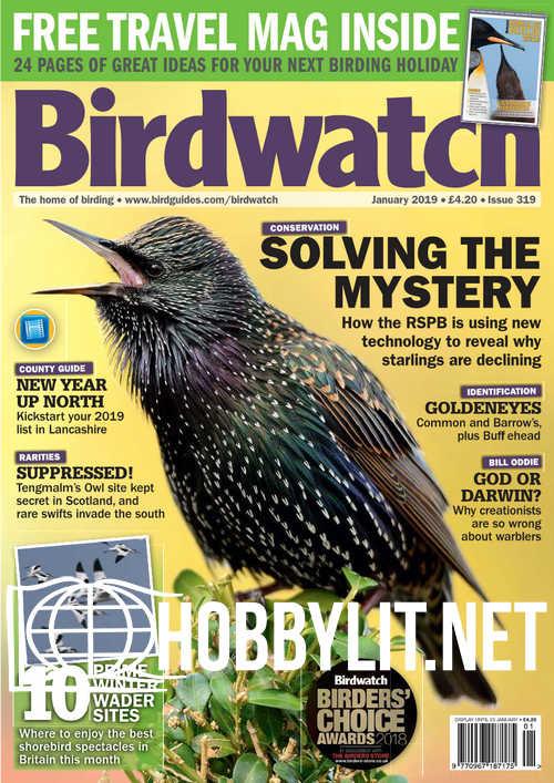 Birdwatch – January 2019