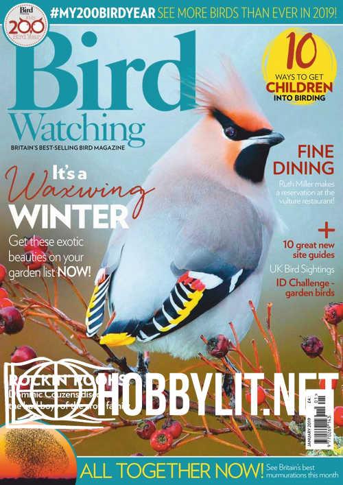 Bird Watching - January 2019