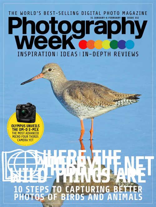 Photography Week - 31 January 2019