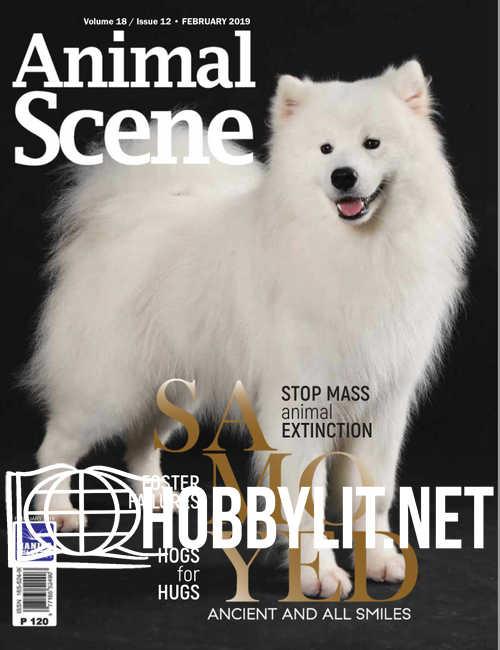 Animal Scene - February 2019