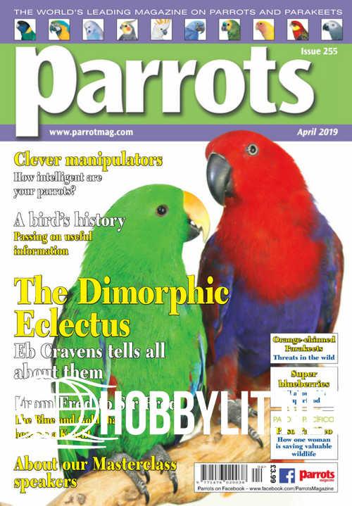Parrots - April 2019