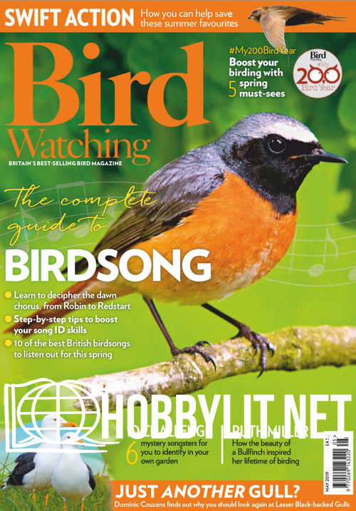Bird Watching - May 2019