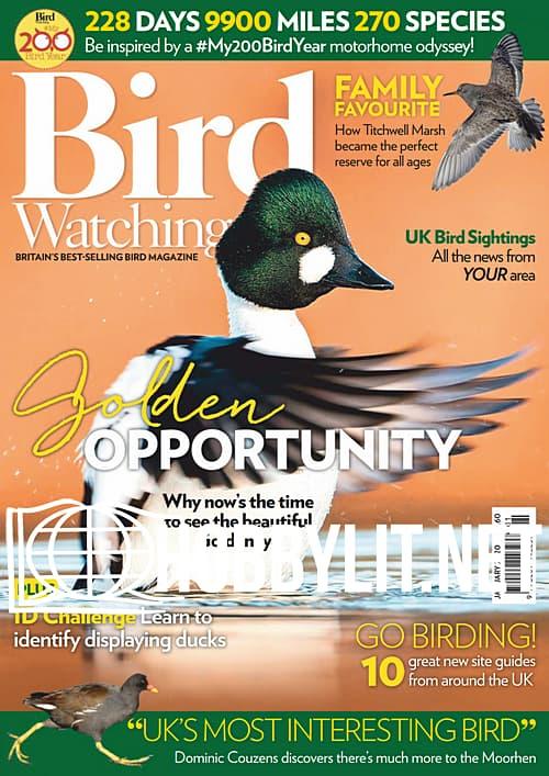 Bird Watching - January 2020