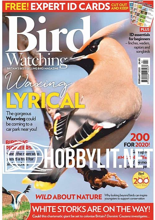 Bird Watching - February 2020