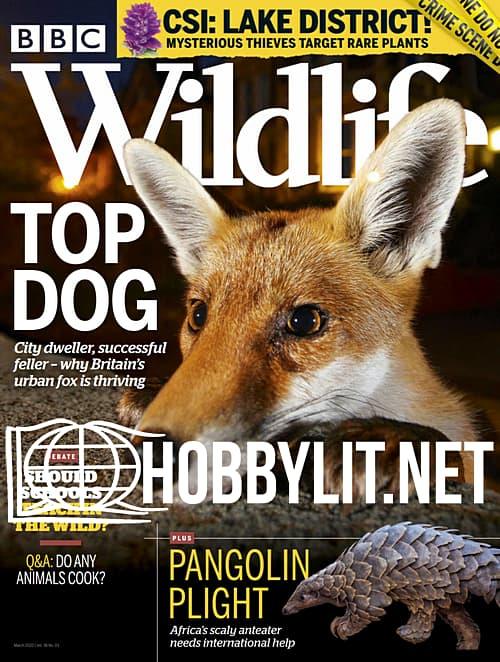 Wildlife - March 2020