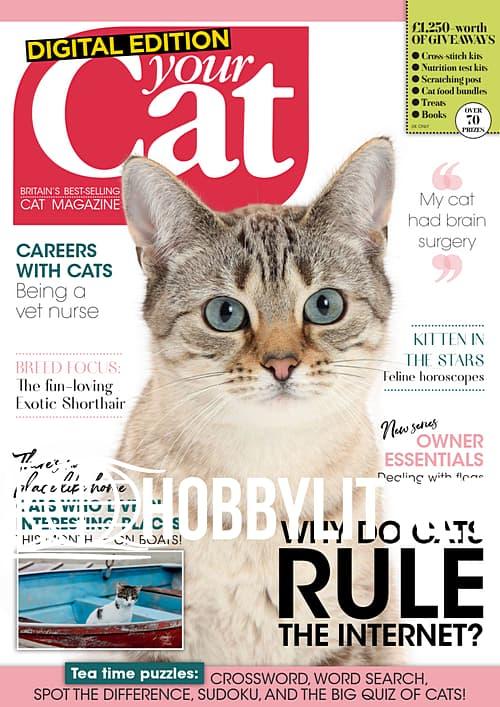 Your Cat - April 2020